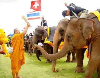 Monk Blessing...image by TAT