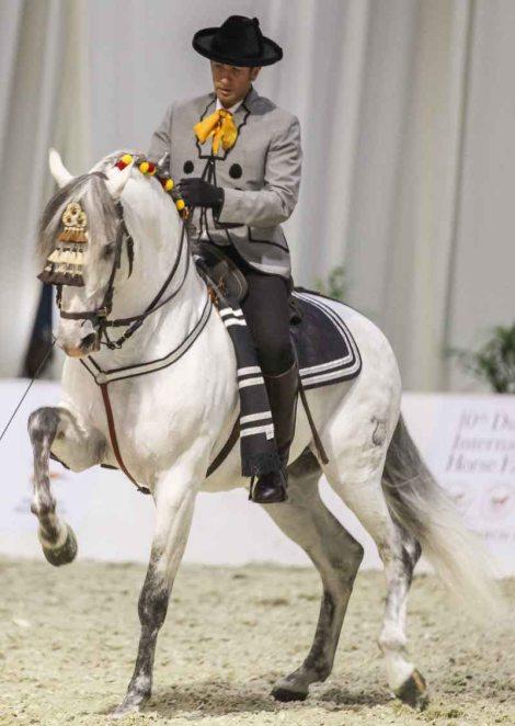 DIHF Spanish horses Shereen Shabnam